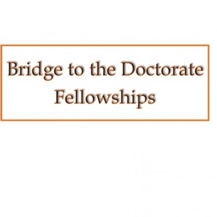 Bridge to the Doctorate Fellowships